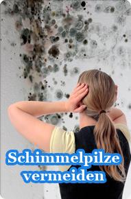Foto: Schimmelbefall, Pilze, Schimmelpilze
