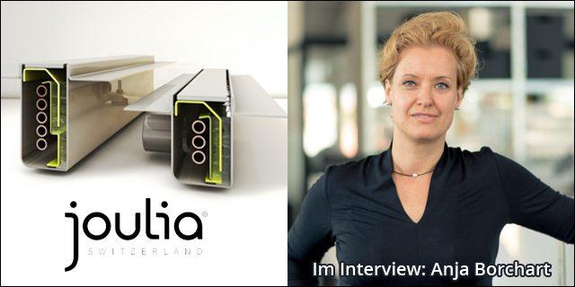 Blog Beitragsbild Interview Joulia Anja Borchart Energieheld Stroke