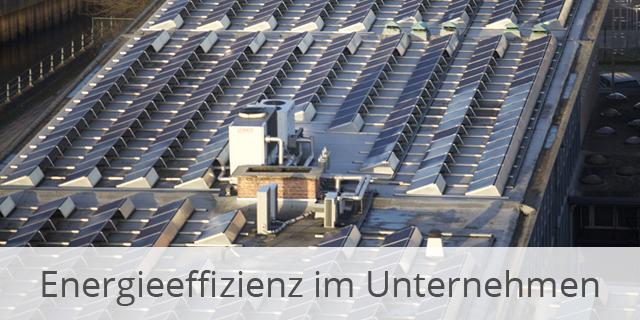 Umweltfreundlich UND Effektiv – Energieeffizienz In Unternehmen