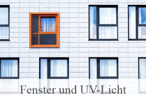 Blog Beitragsbild Fenster Uv Folie
