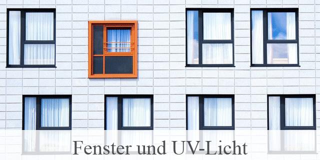 Fensterfolien, Auch Im Winter Hilfreich