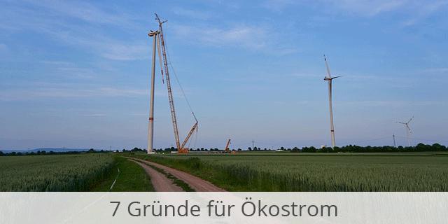Ökostrom Weiter Im Trend – 7 Gründe, Warum Es Sich Lohnt Auf Grüne Energie Umzusteigen!